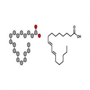 Axit linoleic